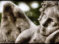 Angels and Cherubs statuary 1