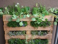 One day I would like to learn to garden. But I am lanky and not so good and rootling around on my hands and knees in the soil. So raised gardening seems like the way to go. Here are some fab raised garden bed ideas I've found.