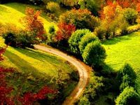 Lovely, pretty, gorgeous, wonderful, beautiful, garden, path, paths, road, roads, outdoors, nature, walk, trail, hike, drive