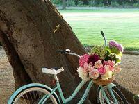 I Like to Ride My Bicycle, I Like to Ride My Bike...