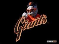 SF Giants / 49ers