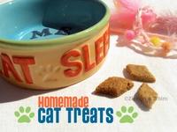 Cat and dog stuff