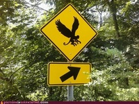 Signs, Signs . . .