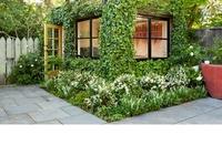 courtyard/backyard/garden inspiration