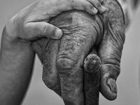 The Beauty of Hands