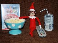 Elf on the Shelf fun