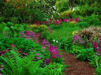 Be inspired by these garden paths........Take a walk with me down a garden path