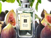 Fragrance Frenzy