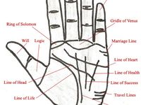 Palm Reading Charts