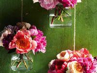Flowers, Fruit, Veg