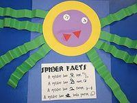 Mini Beasts - Spiders