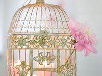 ღ ♥ ღBird Cagesღ ♥ ღ