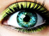 Eye Candy/Make Up