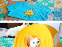 DIY for Kitty