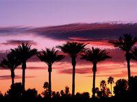 Things to see in Los Angeles...my hometown :)