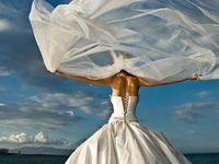 Every Girl Loves Wedding Dresses
