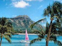 Live Aloha, Love Life