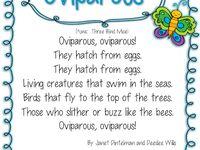 Easter....Oviparous Animal Study