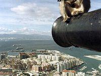 The 100 Best Photos of Gibraltar that we can find! #travel #travelinspiration #travelphotography #gibraltar #YLP100BestOf #wanderlust