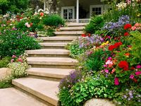 This board is a compilation of landscaping ideas including plants, designs, form & color, and hardscapes. In general, any landscaping ideas for inspiration! If you enjoy gardening be sure to check out my other gardening boards!