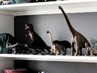 Son's Room Inspiration