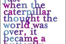wise words / by Michaela Jenichen