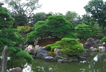 Japanese Gardens / Japan is famed for its beautiful gardens with exquisite attention to detail. These range from classic stroll gardens to contemplative Zen gardens. / by Japan Australia