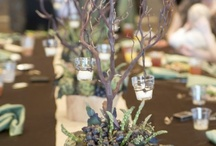 Wedding centerpieces / by Judy Van Kleef