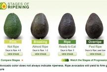"""""""How do you...Avocado?"""" / by Hass Avocados"""