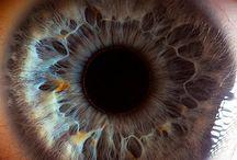 Eyes!! / by Jaden Burke