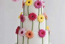 Cake / by Cheryl Wisenbaker