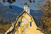 I love barns! / by Lori Fisher Tindall