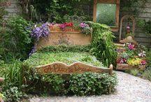 garden ideas  / by Lisa LaFebre