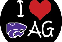 K-STATE, a spot I love full well / by Sarah Brown