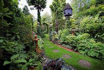Gardening / by Cierra Winkler