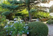 Nicole de Vesin / gardens  / by Amy Hepler