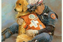 Animal Heroes / Brave and loyal animals who risk their life and limbs to help, serve and protect humans including search and rescue, first responders, police dogs along with therapy and service animals. This board also celebrates the human heroes who do the same to save animals in need. No matter the species, they are true blue heroes to me.  / by Animal Muse: Cathy Currea