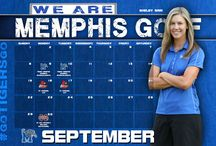2013-14 Wallpaper / by Memphis Athletics