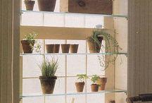 Herb Garden / by Barbara Zeiss