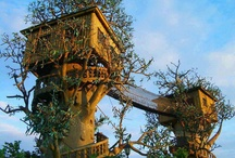 casas en los arboles - tree houses / by Marian Vodopivec