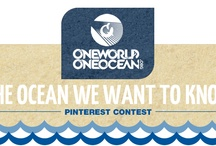 The Ocean We Want To Know / #WorldOceansDay / by Carol