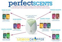 Young living oils / by Leslie Wright