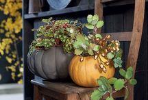 Automne / Autumn / by Marie Claire Idées