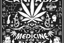 Cannabis / by Conscious Being