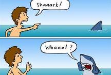 funny / by Debbie Hackman
