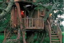 Tree houses / by Cindy Countie
