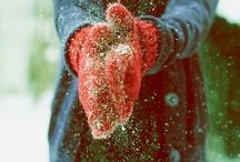 wonderful winter / by Beverly LeFevre