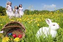 Easter / by Katie Milam
