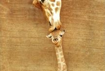 GIRAFFES / by Tracy Bedwell