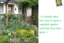 """Edible Front Yards / Food not lawns is a movement that is gaining attention for economic and environmental reasons. Instead of mowing and wasting water on grass, get rid of the lawn, plant healthy food.    *** Click on """"# pins"""" button to see all earlier pins that have been posted. / by Jackie Newberry"""